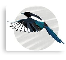 A Beautiful British Magpie Canvas Print