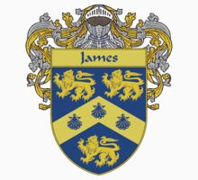 James Coat of Arms/Family Crest Kids Tee
