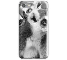 Ring Tailed Lemur Family iPhone Case/Skin