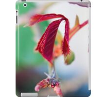 Macro Nature iPad Case/Skin