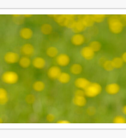 Buttercup Bokeh Sticker