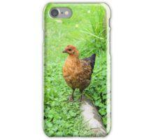 Brown Chicken in a Field iPhone Case/Skin