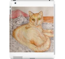 Blink Cat iPad Case/Skin