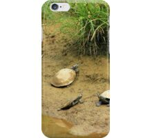 Turtles on a Beach iPhone Case/Skin