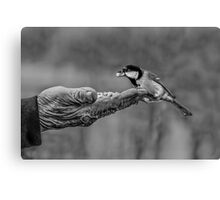 A Bird In The Hand Canvas Print
