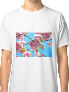 Cherry Blossoms in Bloom Against a Blue Sky Classic T-Shirt