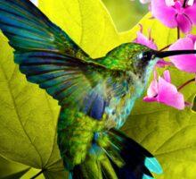 THE HUMMING BIRD, by E. Giupponi Sticker