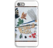 Jan van Kessel, senior () Drawings of insects iPhone Case/Skin