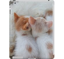 Little Balls of Fur! iPad Case/Skin
