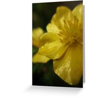 fragile flowers - yellow Greeting Card