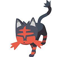 Litten (Pokemon) Photographic Print