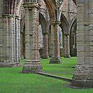 Columns & Arches, Tintern by RedHillDigital