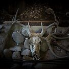 Deer Spirit Ceremonial Alter by DHParsons