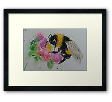 Bumble bee and pink flower Framed Print