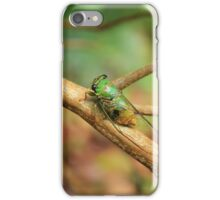 Green Insect on a Tree Branch iPhone Case/Skin