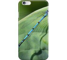Damsel fly iPhone Case/Skin