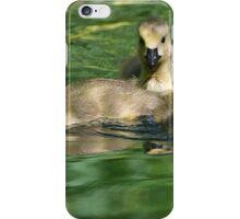 Goslings iPhone Case/Skin