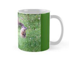Charlise - a Mom again Mug