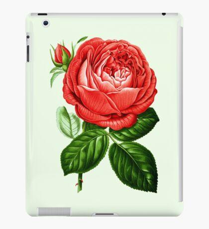 Peony (1876) iPad Case/Skin