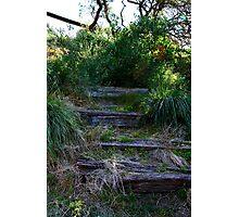 Abandoned stairway Photographic Print