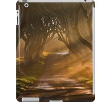 Ireland - Roadway iPad Case/Skin