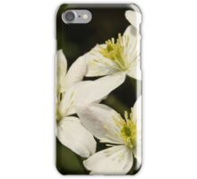 China May 2016 - 8 iPhone Case/Skin