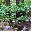 shiba inu water bowl by Bruce  Dickson