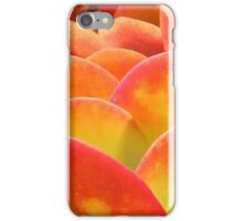 Kalanchoe iPhone Case/Skin