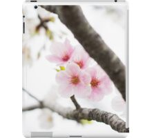 Pink Japanese Cherry Blossoms iPad Case/Skin