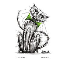 Smelly cat Photographic Print