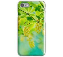 barberry, blooming shrub - soft focus iPhone Case/Skin