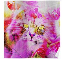 Sweety Cat Poster