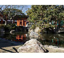 Japanese Pomd Photographic Print