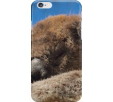 Otways Koala  iPhone Case/Skin