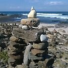 Dolphin Point Beach Rock Garden by BronReid
