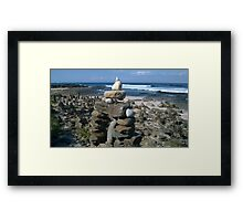 Dolphin Point Beach Rock Garden Framed Print
