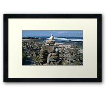 Dolphin Point Beach Rock Garden Framed Print