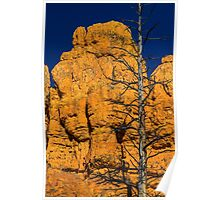 USA. Utah. Red Canyon. Dead Tree. Poster