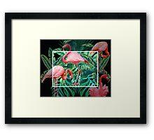 tropical mood  Framed Print