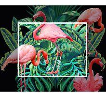 tropical mood  Photographic Print