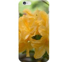 Adorned by the sun iPhone Case/Skin