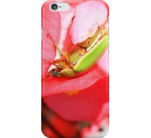 Green Beetle on a Flower iPhone Case/Skin