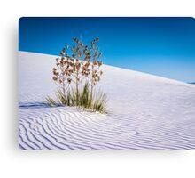 White Sands National Monument Canvas Print