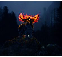 Mythical Basset Photographic Print