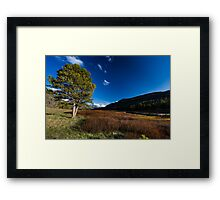 Spring breaks in the Uinta's Framed Print