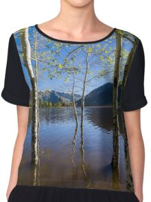 Aspens in Smith and Morehouse  Chiffon Top