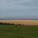 irish landscape by Kent Tisher