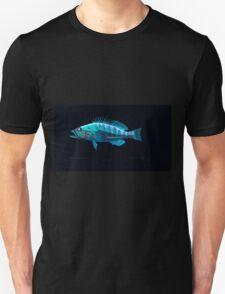 Natural History Fish Histoire naturelle des poissons Georges V1 V2 Cuvier 1849 226 Inverted Unisex T-Shirt