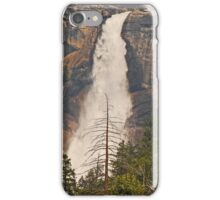 Dead Pine Tree iPhone Case/Skin