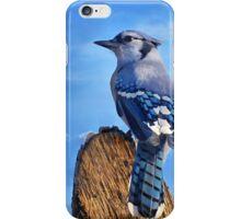 Heavenly Jay iPhone Case/Skin